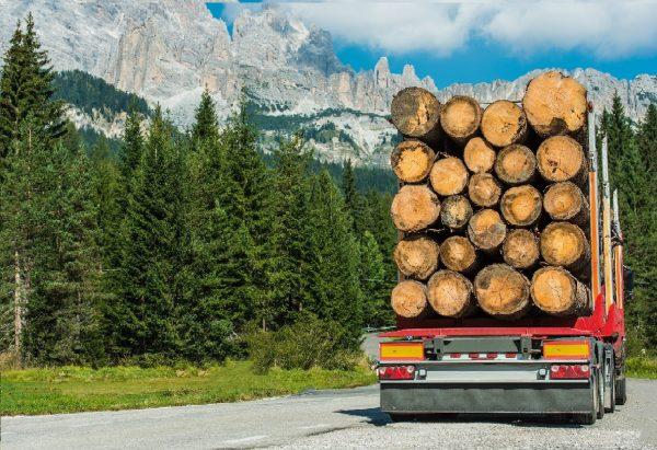 Lumber Trade Fuels Economic Growth In Canada, Border Brokers, Licensed customs broker